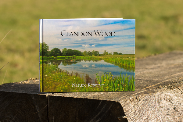 Photobook of Clandon Wood